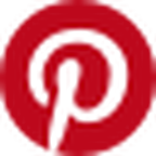 Favicon for pinterest.nz
